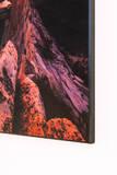 Gallery Mount Prints