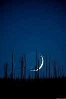 Crescent Moonset print