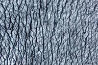 Glacier Abstract print