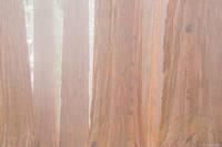 Sequoia Fog print