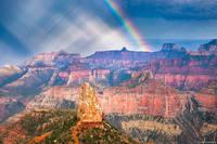 Point Imperial Rainbow print