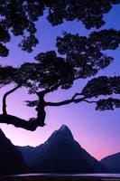 Milford Sound Sunset print
