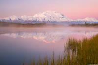 Denali Sunrise print