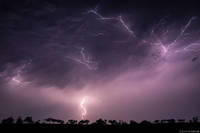Lightning in the Bush print