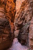 Fern Glen Canyon print