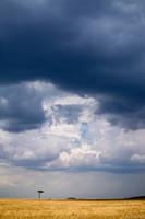 Storm Over the Mara print