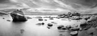 Bonsai Rock print