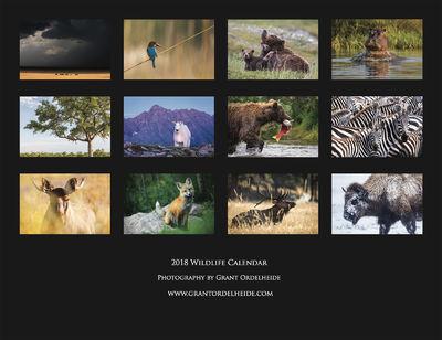2018, wildlife, calendar,