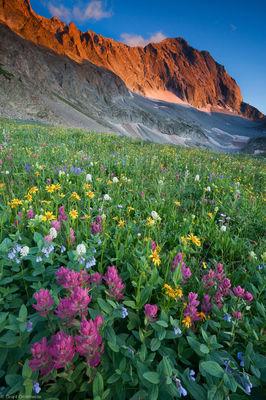 capitol peak, wildflowers, lake, snowmass, colorado, fields, flower