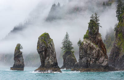 cove, spires, kenai, fjords, national, park, alaska, usa,, fog, seward
