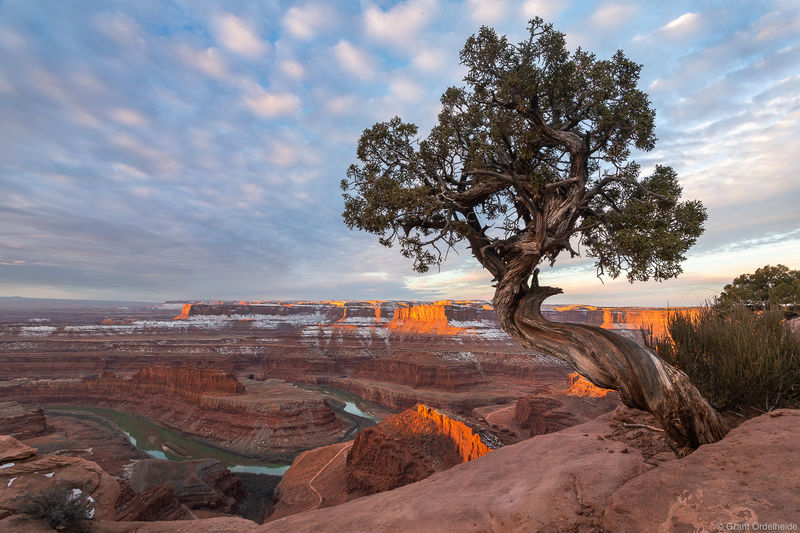 dead, horse, point, state, park, utah, sunrise, canyonlands, national, park, moab,