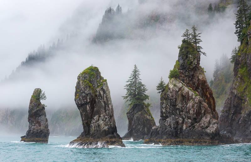 cove, spires, kenai, fjords, national, park, alaska, usa,, fog, seward