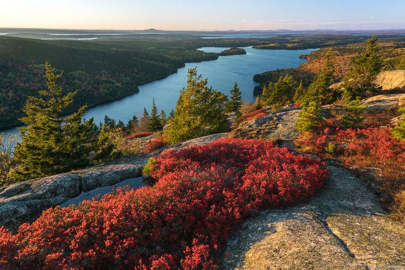 beech, mountain, acadia, national, park, maine, autumn, foliage, summit