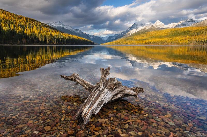 Bowman Lake Autumn