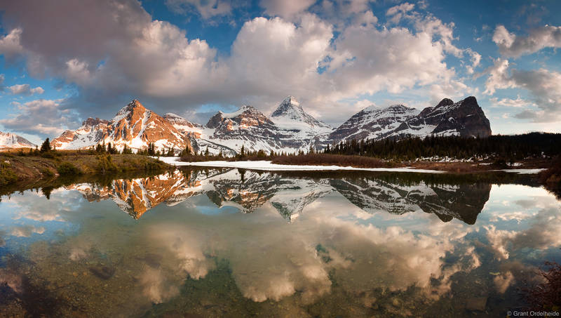 mount assiniboine, british columbia, reflected, small, alpine, tarn, canadian, rockies, provincial, park,