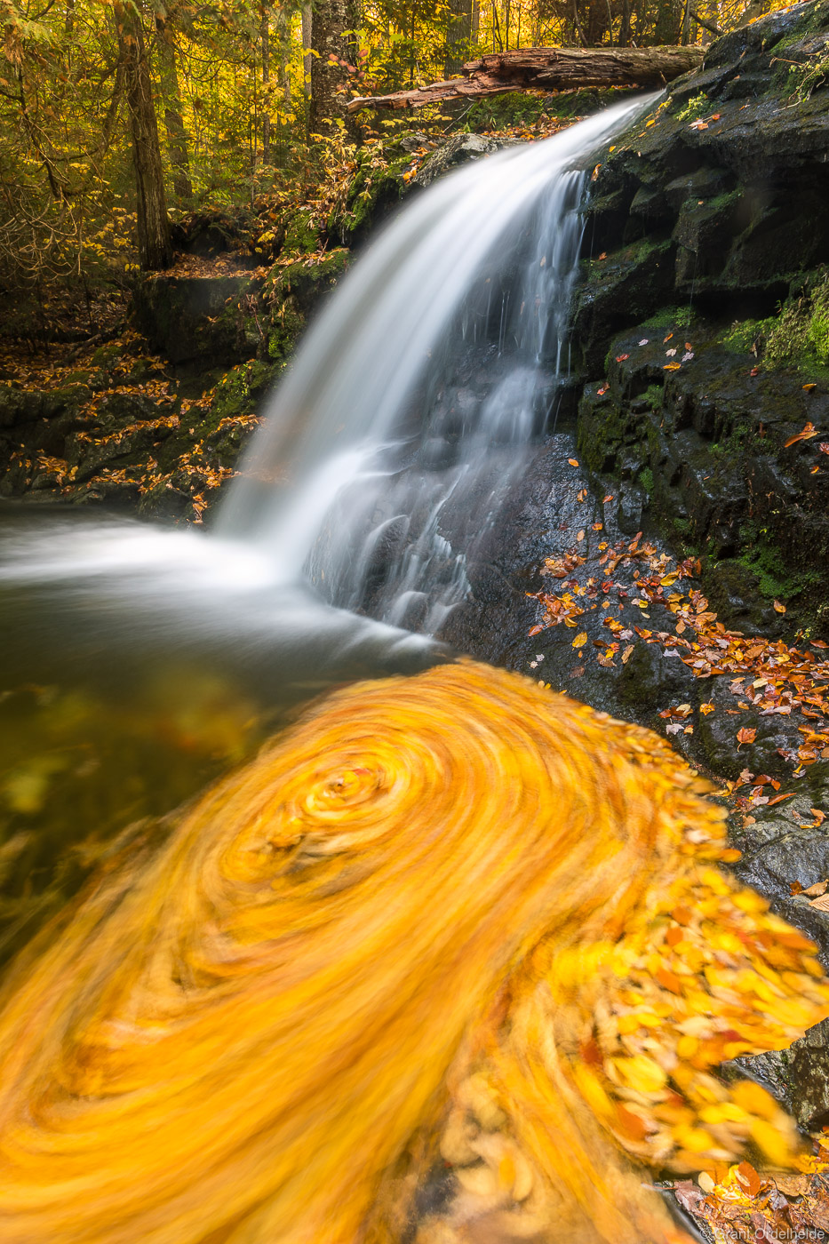 adirondack, swirl, lake, placid, waterfall, pool, spinning, leaves, creek, mountains, photo
