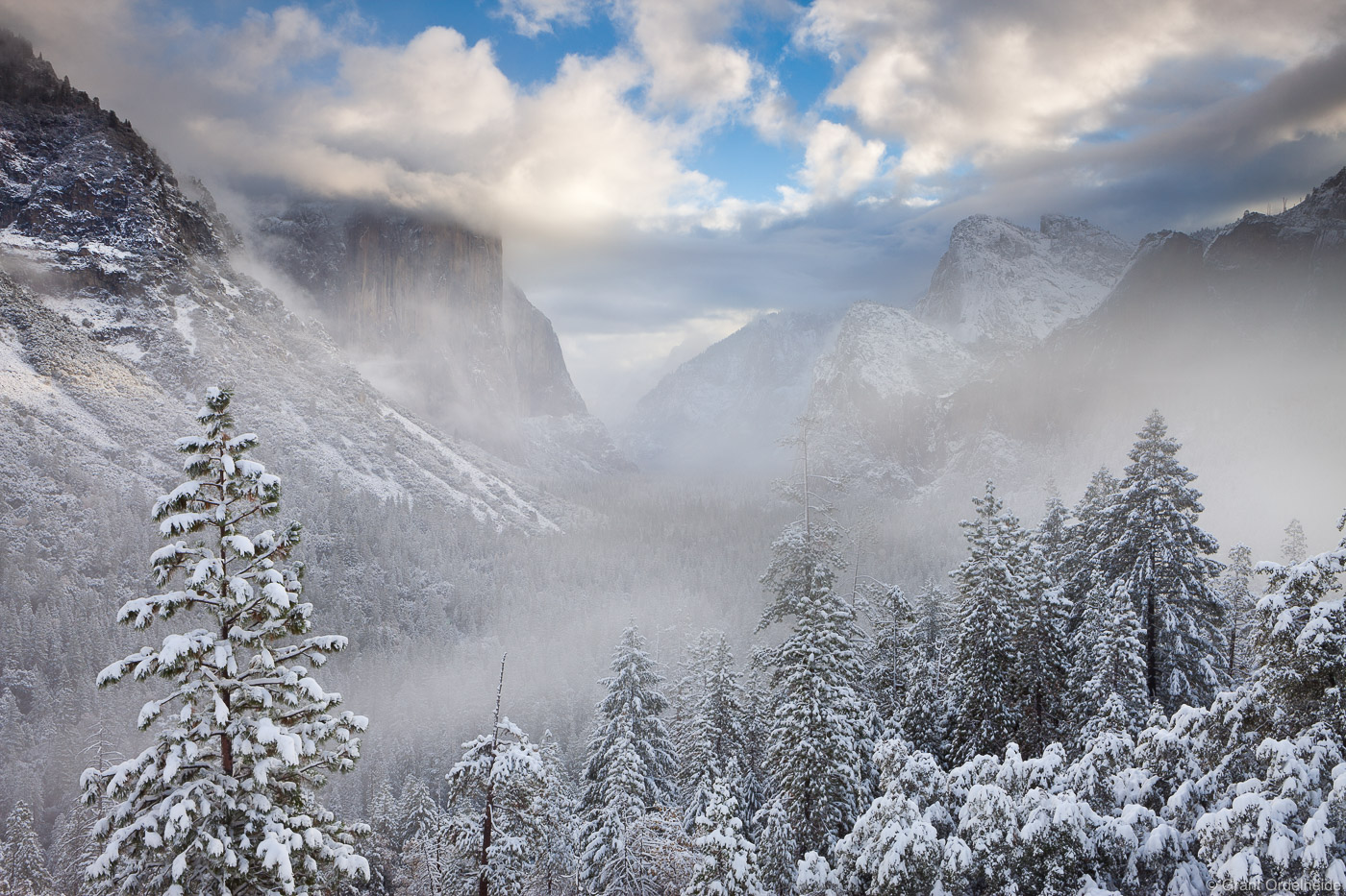 A winter storm covers Yosemite Valley in a blanket of snow.