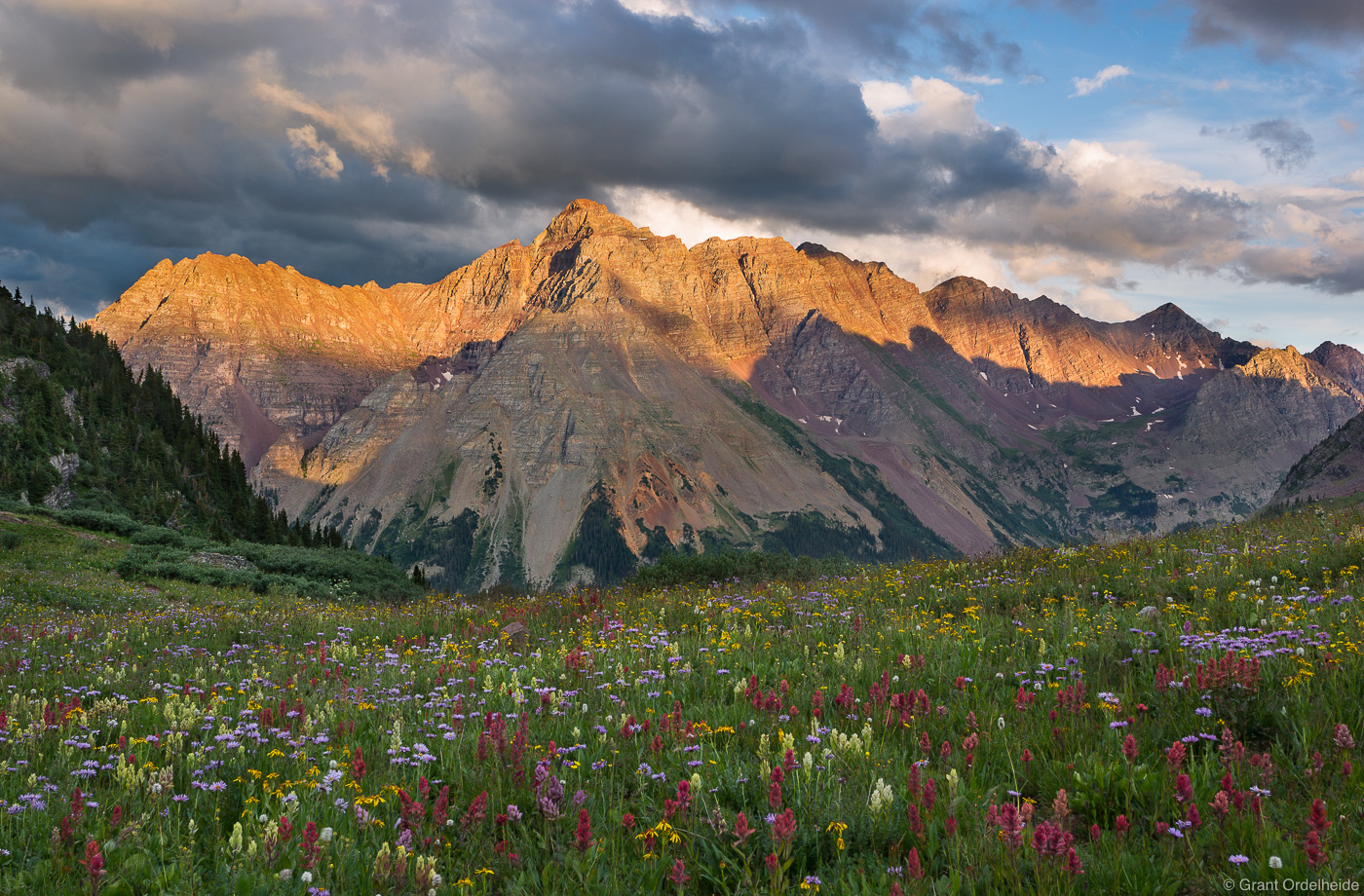 pyramid peak, maroon bells, wilderness, aspen, colorado, wildflower, buckskin pass,, photo
