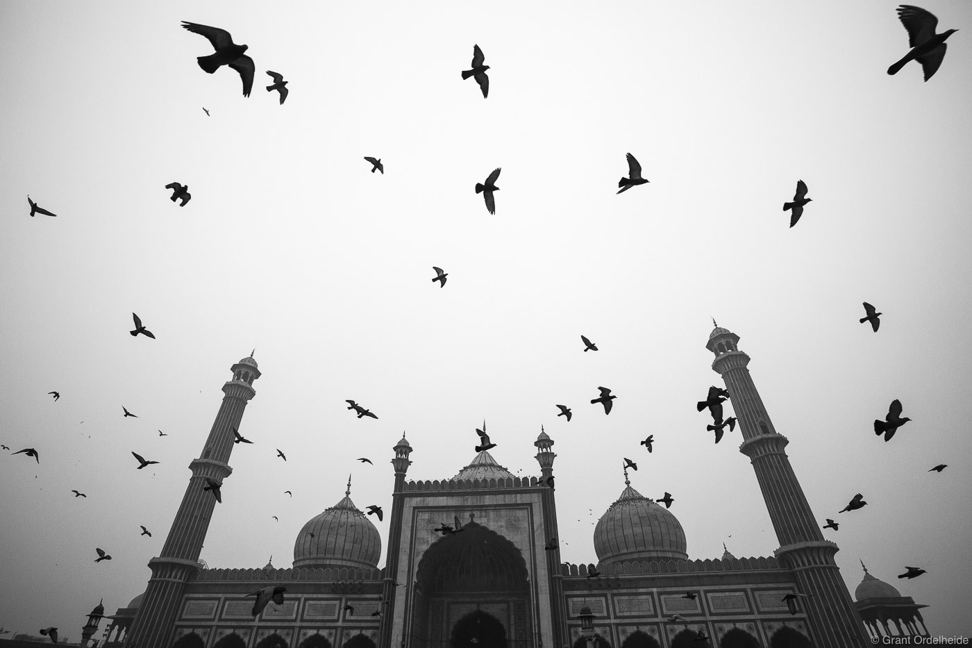 Pigeons flying above theJama Masjid Mosque in New Delhi, one of biggestand best known mosques in India.