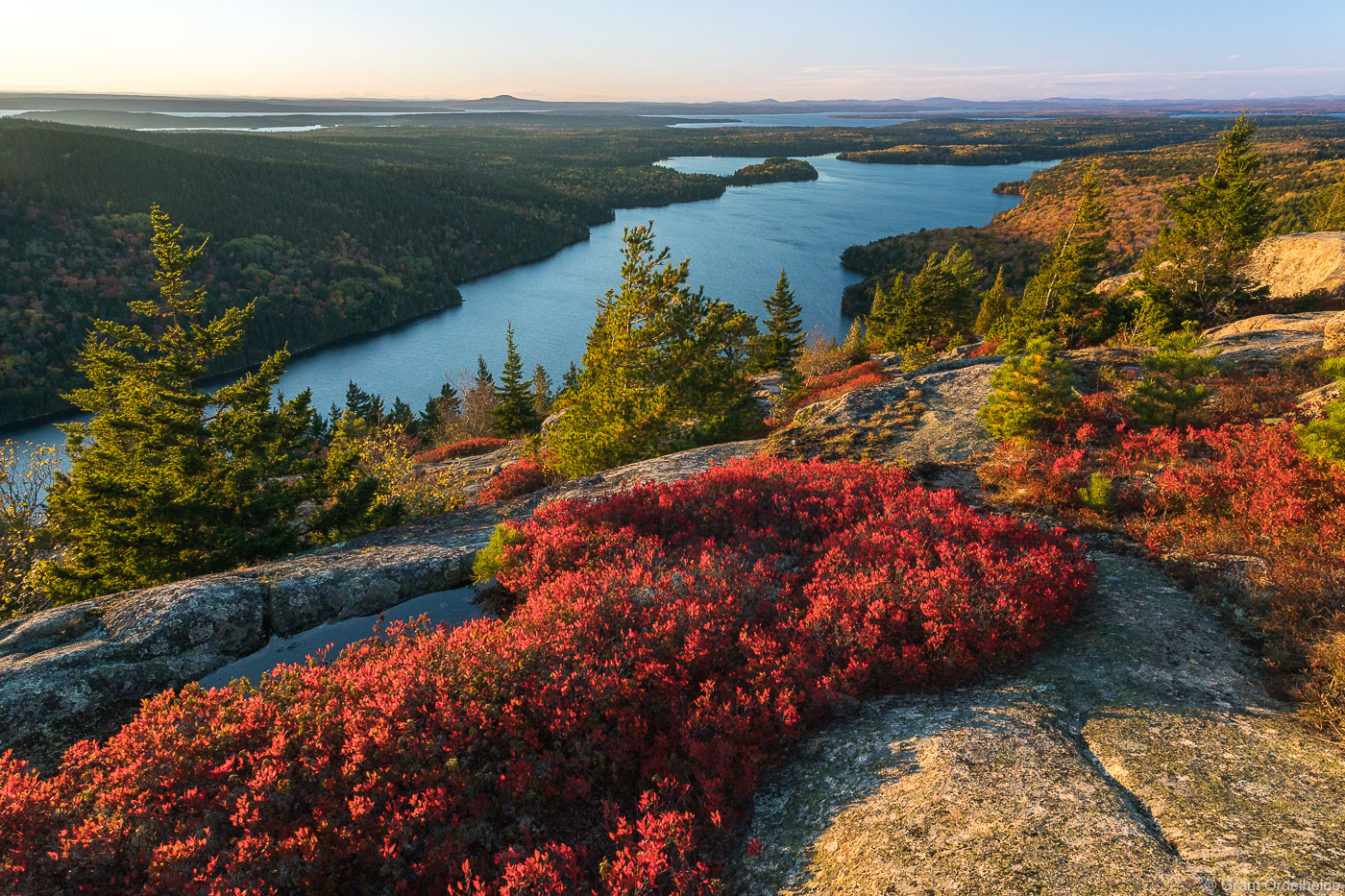 Autumn foliage at the summit of Beech Mountain in Acadia National Park.