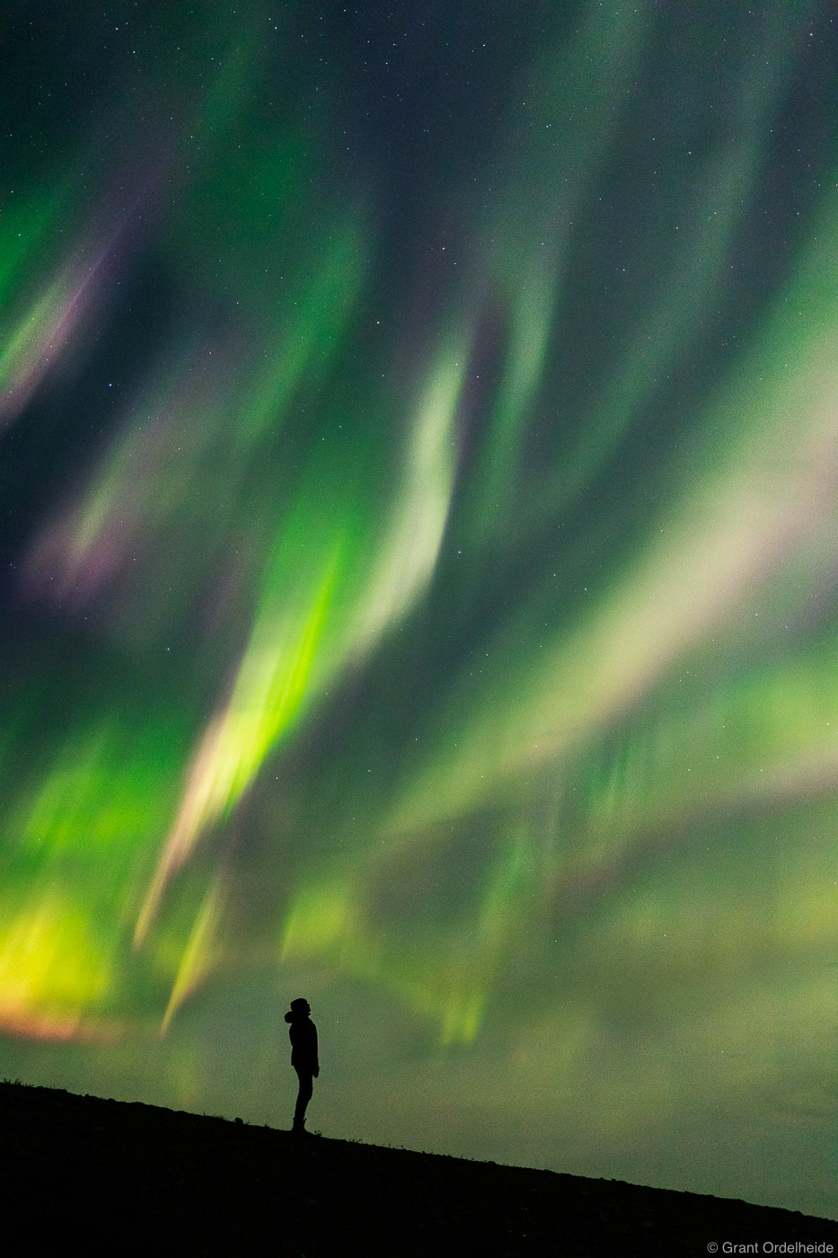 northern, sky, dawson city, yukon, spectacular, person, aurora, borealis, canada,, photo
