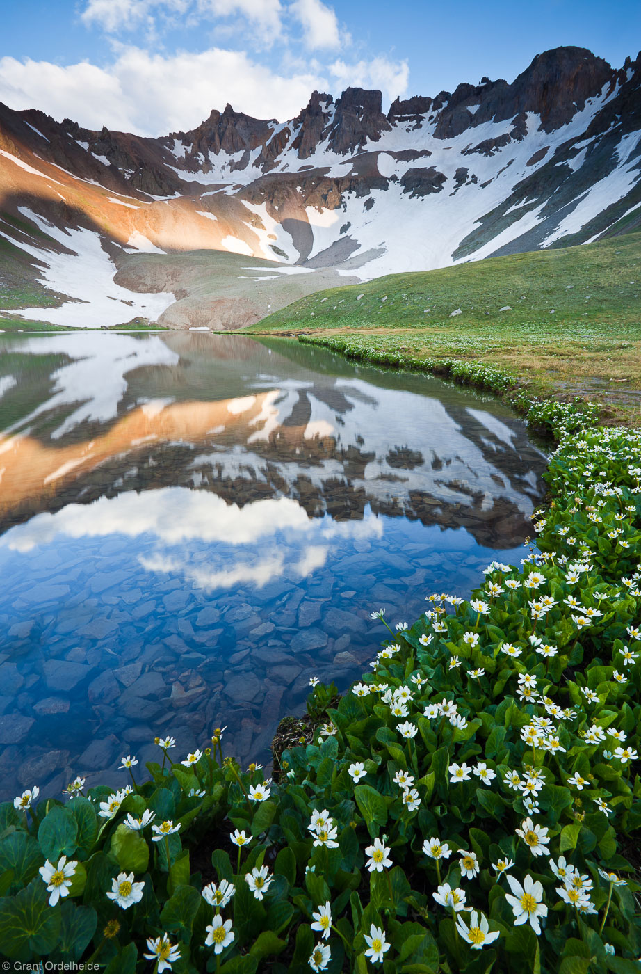 upper, blue, lakes, mt. sneffels, wilderness, colorado, ouray, marsh, marigolds, blooming, basin, photo