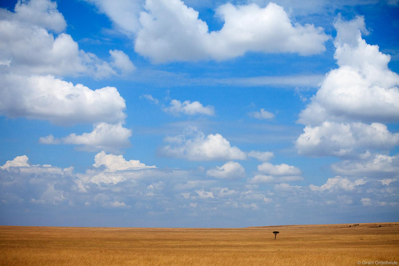 open, openness, mara, masai, vast, kenya, africa, photo