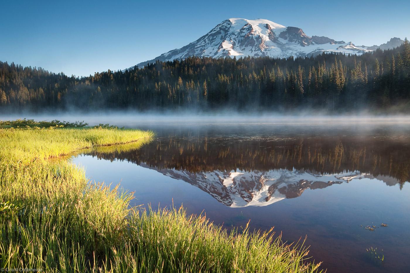 mt. rainier, washingtion, national park, reflection, lakes, early, morning, light, grass, paradise, photo