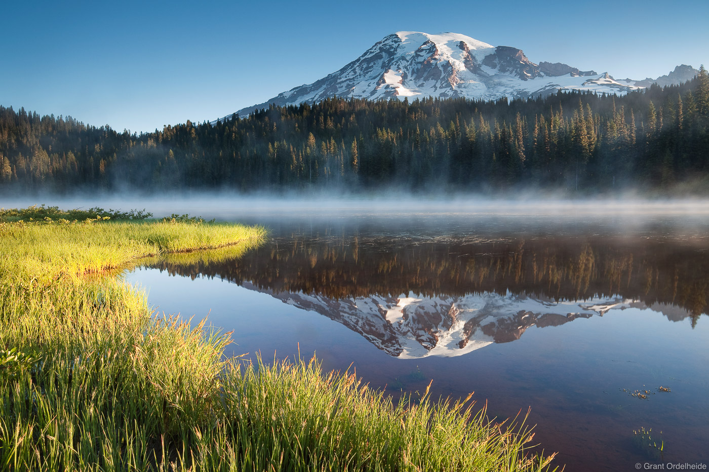 Early morning light on the grass of Reflection Lakes near Paradise in Mt. Rainier National Park.